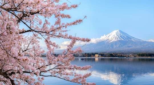 Kyoto, Tokyo & Japan Voyage