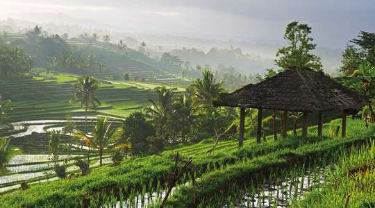 Highlights of Indonesia