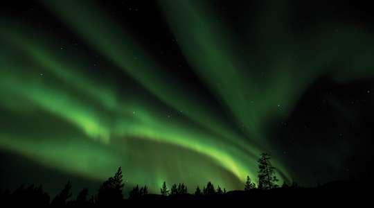 Aurora Klondike Experience
