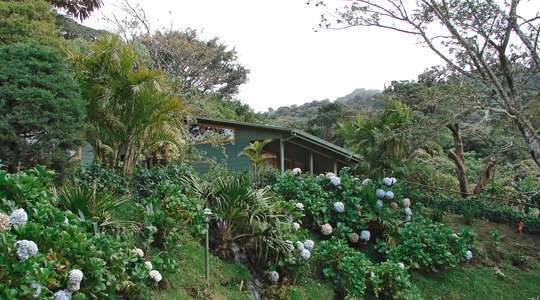 Cloud Forest Lodge, Monteverde