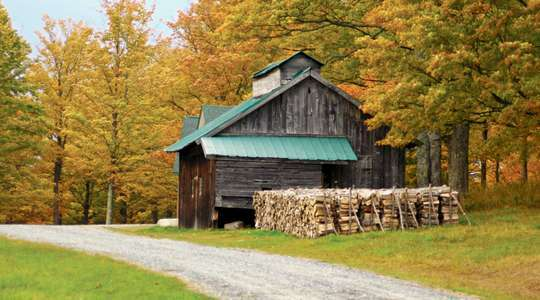 New England's Fall Foliage with Insight Vacations