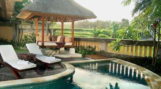 Rice Field Pool Villa