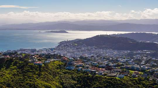 Wellington & Martinborough