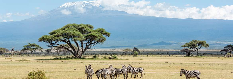 Kenya Beach & Safari