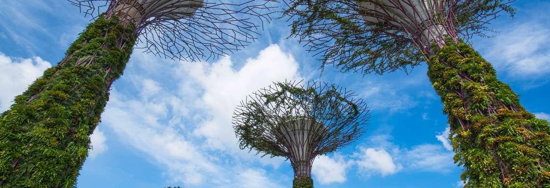 Highlights of Singapore & Malaysia