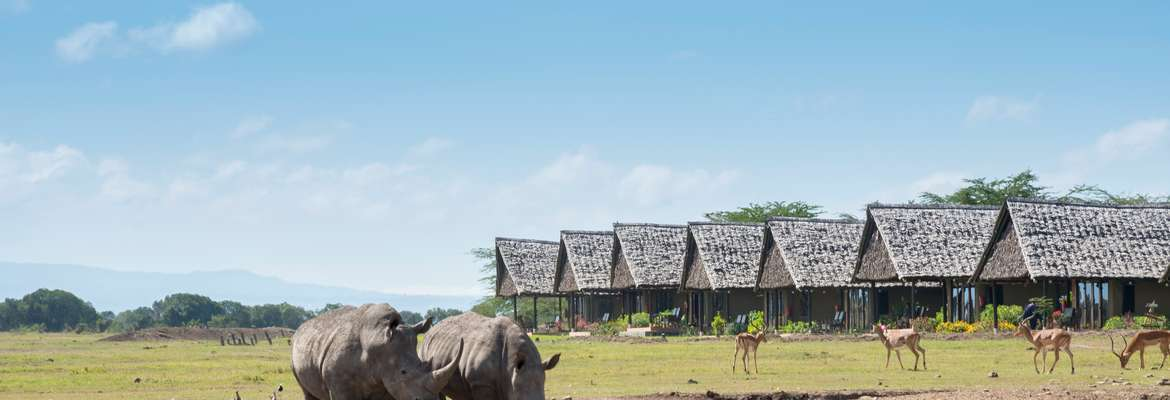 Sweetwaters Serena Camp, Ol Pejeta