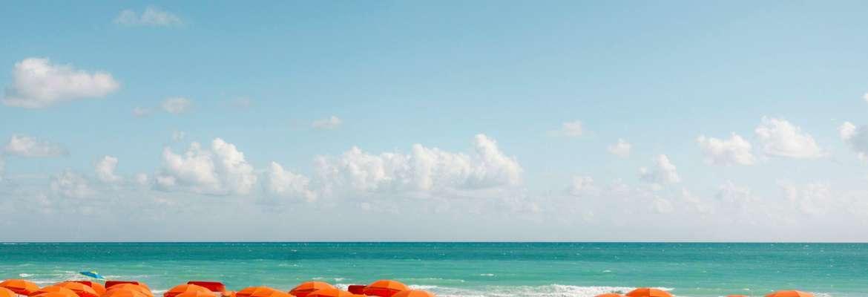 Royal Palm South Beach Miami - A Tribute Portfolio Resort